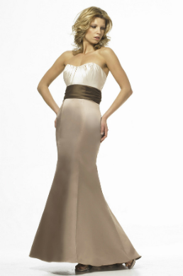 Cute and Curvy Mermaid Style Satin Gown