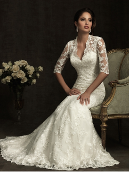 Elegant Lace Fit and Flare Wedding Dress