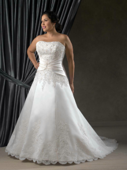 Embroidered Satin and Lace Queen Size Wedding Gown