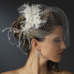 Austrian Crystal Birdcage Veil with Feathers