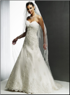 Lace over Satin Wedding Dress