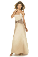 A Line Strapless Satin Gown