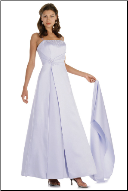 Ankle Length and Affordable Gown
