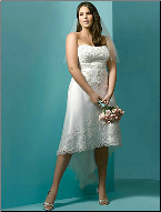 Charming Lace over Satin High Low Wedding Dress