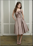 Charming Strapless Tea Length Dress