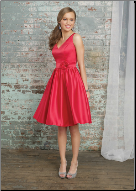 Full Skirt V-Neckline Dress