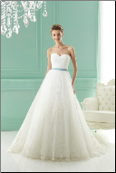 Organza and Lace Bridal Gown