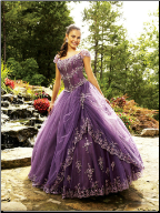 Embroidered Tulle over Satin Quinceanera Gown