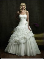 Adorable Organza Wedding Dress