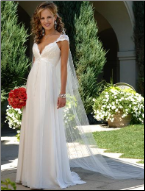 Chiffon Empire Line Wedding Gown