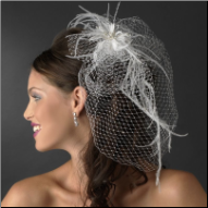Captivating Birdcage Veil