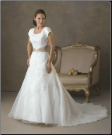 Dainty Embroidered Organza over Satin Wedding Dress
