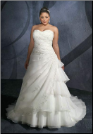 Elegant Organza Full-Figure Wedding Gown