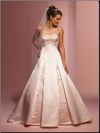 Embroidered Satin A-Line Wedding Dress