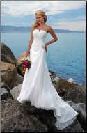 Empire Line Chiffon Bridal Dress