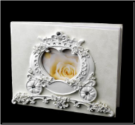 Romantic Cinderella Coach Guest Book