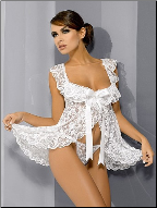 Chiffon Lace Embroidered Baby Doll