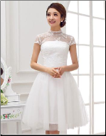 Mandarin Collar Embroidered Organza Reception Mini Dress