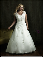 Plus Size Satin Empire Line Wedding Gown