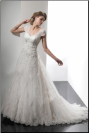 Satin and Tulle Gown with Lace Bodice and Sleeves