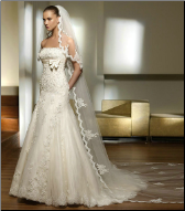 Lace and Tulle over Satin Bridal Gown