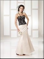 Elegant Satin and Lace Gown