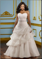 Plus Size Organza Wedding Ballgown