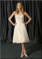 Lace over Tulle Short Wedding Dress