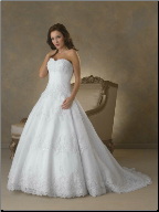 Alluring Embroidered Organza over Satin Gown