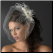 Austrian Crystal Birdcage Veil with Feathers - elegant and chic
