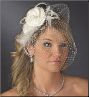 Beautiful Feather Fascinator and Bird Cage Face Veil
