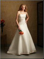 Charming Satin Wedding Gown with Lace