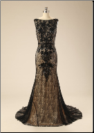 Daring Lace over Satin Sheath Gown