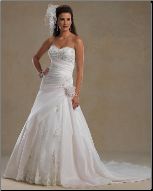 Beautiful Satin and Organza Princess Style Gown