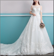 Illusion Bodice Organza Wedding Dress with Short Sleeves