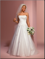 Princess Style Tulle over Satin Wedding Gown