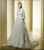Satin and Organza Wedding Dress with Lace Sleeves