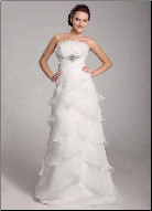 Beautiful Organza Gown